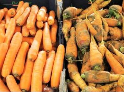 El despilfarro alimentario es un problema moral y ambiental