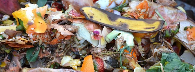 ¿El compost es la clave del futuro de la gestión de residuos?